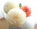 菊&オレンジロマンチカ